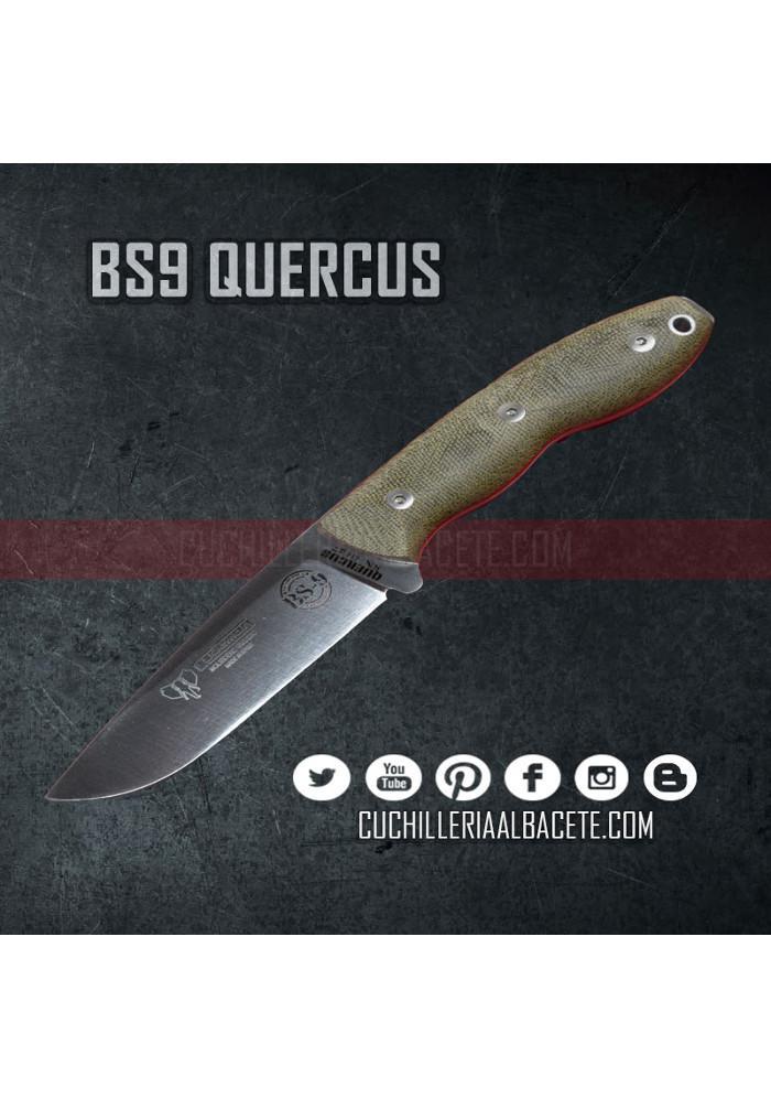 BS9 QUERCUS - Cudeman