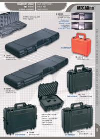 arms  GUNS BRIEFCASES INNER PADDED