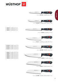 professional knives cook GOURMET SERIES 2