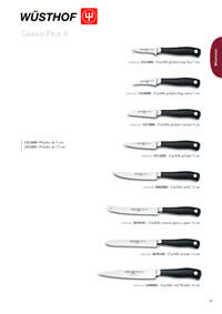 professional knives cook GRAND PRIX SERIES II 1